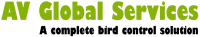 AV Global Services