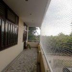 Bird Netting 11